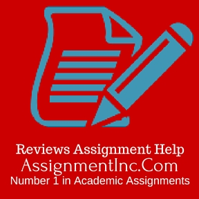 Best essay editing service review